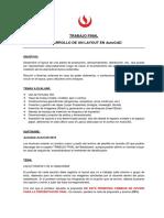 01 Directrices Para El Trabajo Final - Dibujo de Ingeniería 1