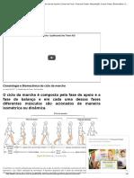Cinesiologia e Biomecânica Do Ciclo Da Marcha _ Treino Em Foco – Personal Trainer, Musculação, Cursos Online, Biomecânica, Cinesiologia