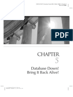 Everyday Oracle DBA - Chapter 5  - Database Down Bring It Back Alive