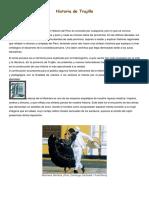 Historia de Trujillo.docx