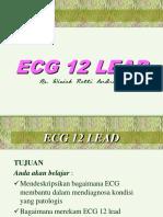 Pertemuan 13 12 LEAD ECG.pdf