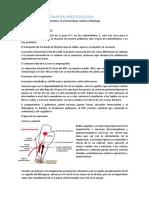 Fisiologia Pulmonar en Anestesiologia