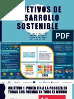 Objetivos de Desarrollo Sostenible _4
