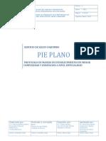 PIE PLANO (1).doc
