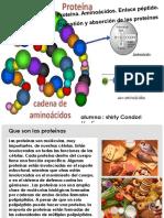 Shirly Condori Martinez 14mar17 Proteinas
