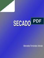 secado FARNMACIA.pdf