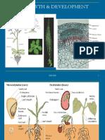 Bab 7-Plant Growth & Development