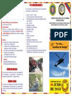 Folleto encuentro de brigadas.pdf