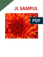 JUDUL SAMPUL