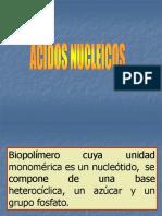 10acidos Nucleicos Carmen