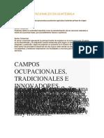 Campos Ocupacionales en Guatemala