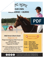 Wild Horse Flyer for California event