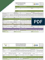 PLANTILLAS CAMPO-ACCESS.pdf