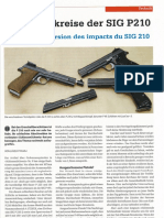 Streukreise Der SIGP210 // La dispersion des impacts du SIG P210