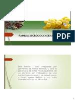 Cap 10 Familia Micrococcaceae