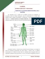 12_Sistema_nervioso_y_estudio_morfofuncional_de_la_neurona_lectura_ (2).pdf