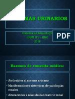 sintomas-urinarios-1