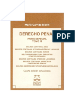 Garrido Montt, Mario - Derecho Penal Parte Especial Tomo III Ed 2010 (1).pdf