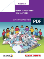modulo sistema financiero