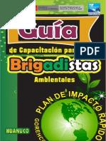 Guia Brigadasambientales en Word