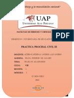 PRACTICA PROCESAL civil III