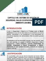 Capitulo Viii - Sistema de Gestión de Seguridad, Salud Ocupacional y Medio Ambiente (Ssoma)