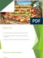 Cultivos Andinos Sub-explotados y Sus Aportes a La