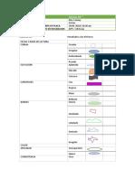 02 - Manual Excel 2016 - (Intermedio - Avanzado)