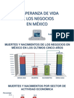 Esperanza de vida de los negocios en mexico