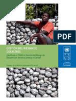 Brochure_Desastres_sp Gestion Del Riesgo de Desastres