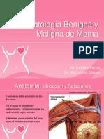 patologabenignaymaligna 4.pptx