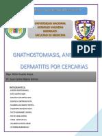 Monografia Gnathomiasis Anikasis y Dermatitis Por Cercarias