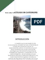 Rol del psicologo en catastrofe