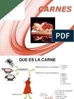 1 Caracteristicas de Carnes