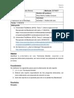 A1 Gerardo Rubio Alvarez.docx