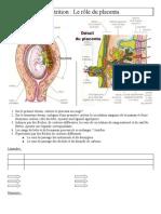 Placenta et accouchement