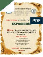 Expo Anatopato