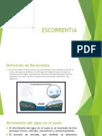 ESCORRENTIA.pdf