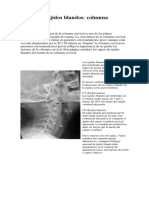 Paper 1 cervical.docx