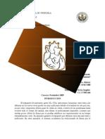 Informe II Corazón