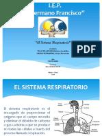 El Sistema Respiratorio (Exposicion)