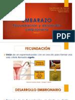 7°-Clase-5-Embarazo.pdf