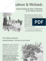 Salmon and Wetlands - Washington Wetlands Network