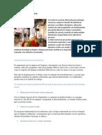 Higienizacion de La Plata