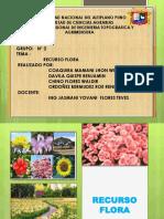 Recurso Flora.grupo 2