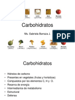 Hidratos de Carbono I