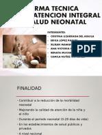 Norma Tecnica Atencion Neonatal