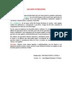 FÀBULA LAS AVES FUTBOLISTAS-Thomas.doc