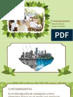 Presentación Contaminantes Ambientales