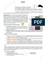 REMIT.pdf